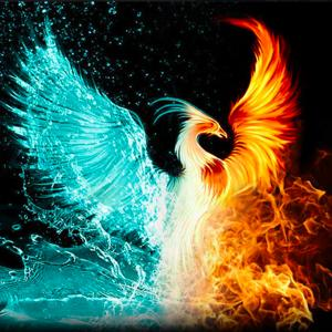 The Phoenix Club
